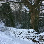 Kendal Golf Club  in the snow 2018